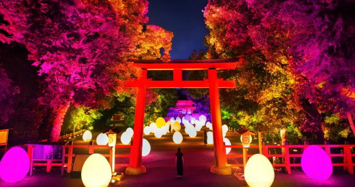 20190627【Press News/Travel】チームラボ、京都の世界遺産 下鴨神社にて今年もアート展。規模を拡大した「下鴨神社 糺の森の光の祭 Art by teamLab – TOKIO インカラミ」令和元年8月17日から9月2日まで
